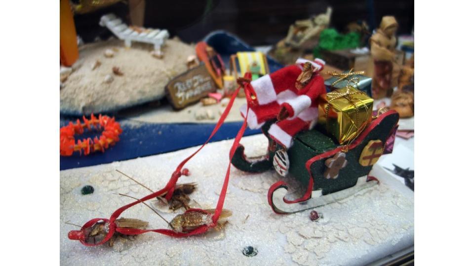 Хотите получить подарок от такого... Санта-Клауса?