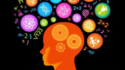 Как прокачать интеллект?