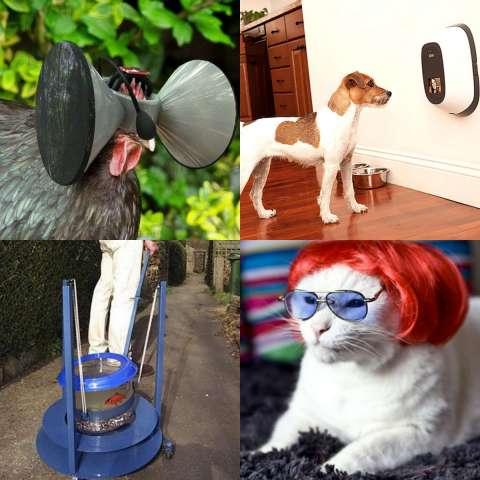 Топ-7 изобретений для животных