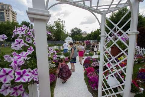 Цветов много не бывает: Moscow Flower Show